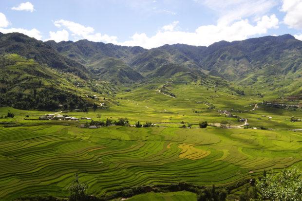 Valle de Tu Le en Mù Cang Chải