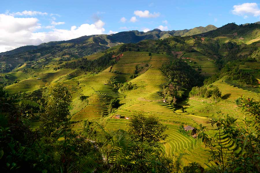 Fotos del Norte de Vietnam