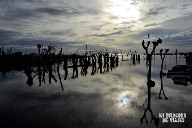 Reflejos del lago y árboles en Epecuén