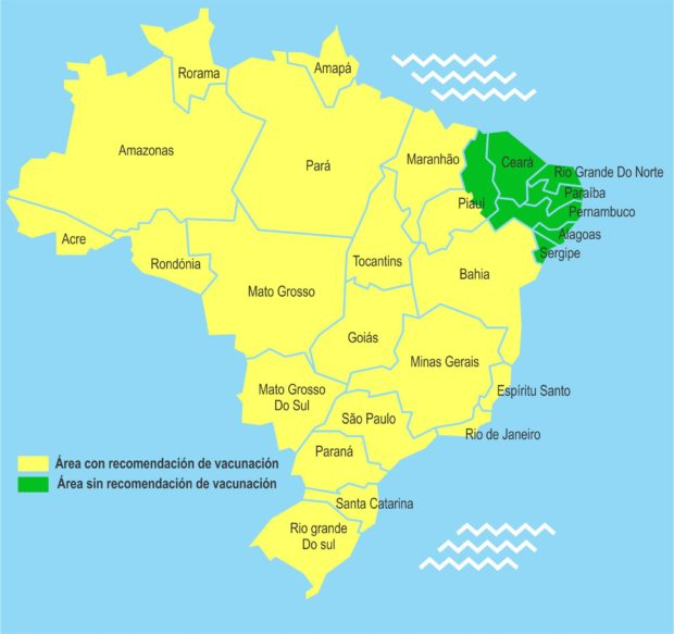 fiebre amarilla en brasil